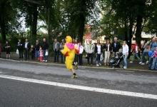 kyckling024